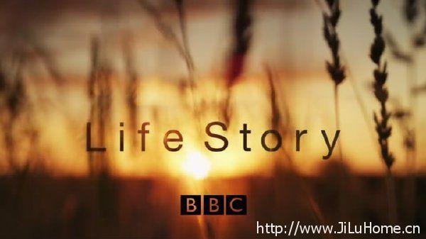 《生命的故事/生命之旅/生命礼赞 Life Story》