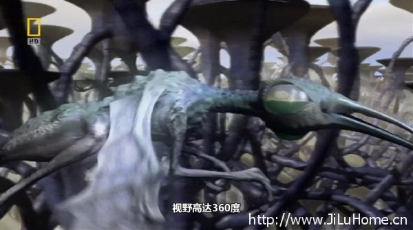 外星人报道/地外文明 Extraterrestrial》