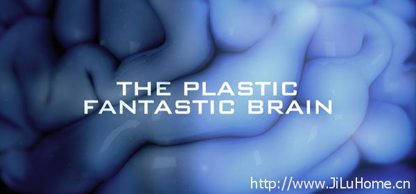 《人脑超能力 The Plastic Fantastic Brain》