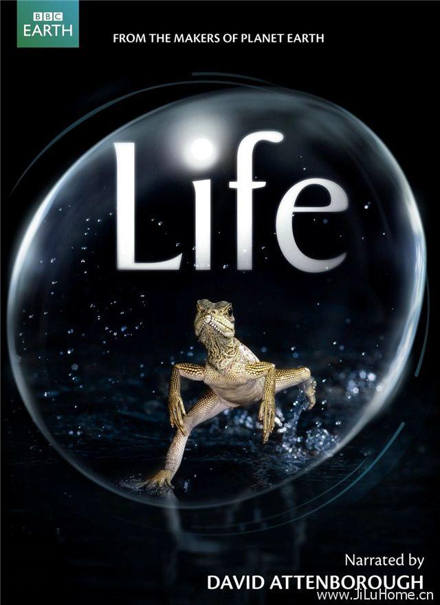 《生命 Life》
