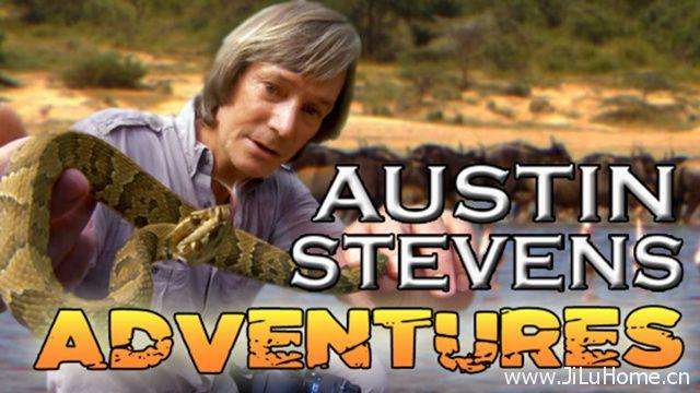 《奥斯汀闯荒野 Austin Stevens Adventures》