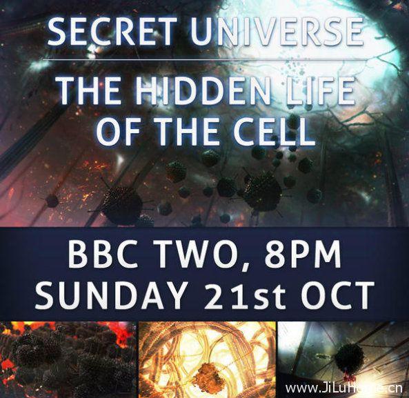 《细胞的秘密生活 The Hidden Life of the Cell》