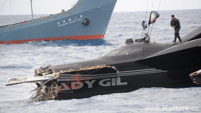 《护鲸大战 Whale Wars》