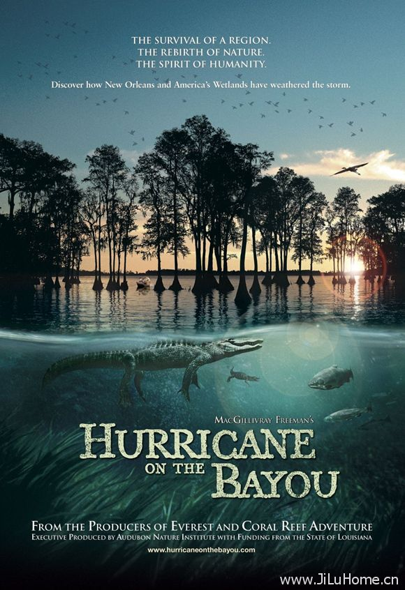 《海湾的飓风 Hurricane on the Bayou》