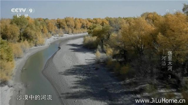 《塔里木河 Tarim River》