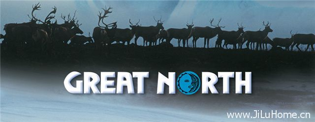 《大北方 Great North》