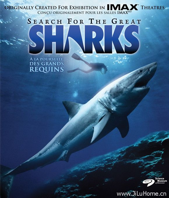 《鲨鱼探索 Search For The Great Sharks》