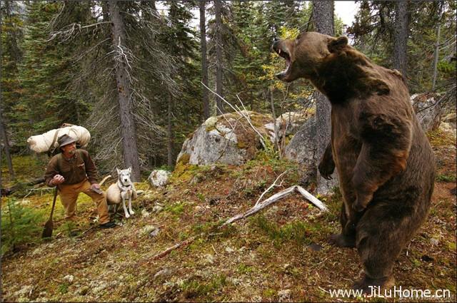 《最后的猎人 Le dernier trappeur》