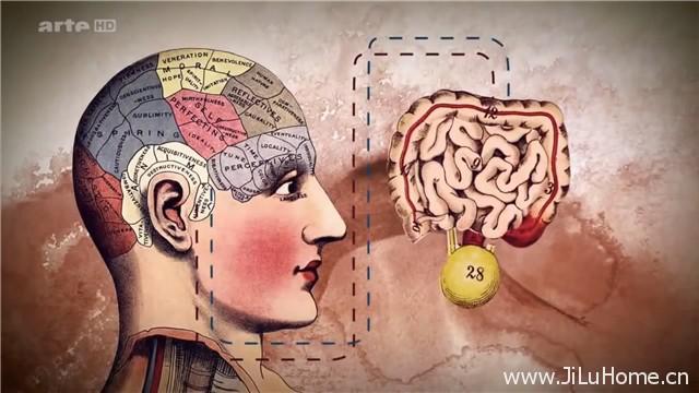《腹部:我们的第二个大脑 Le ventre notre deuxieme cerveau》