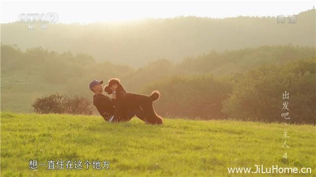 《出发吧!主人 Traveling with a Poodle》