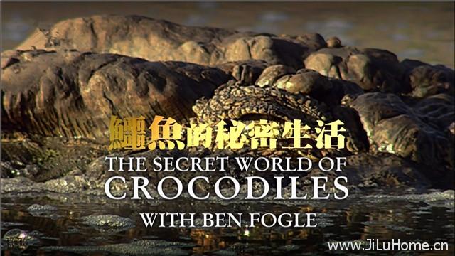 《鳄鱼的秘密生活 The Secret World Of Crocodiles With Ben Fogle》