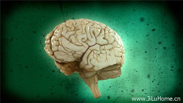 《脑力大挑战 Test Your Brain》