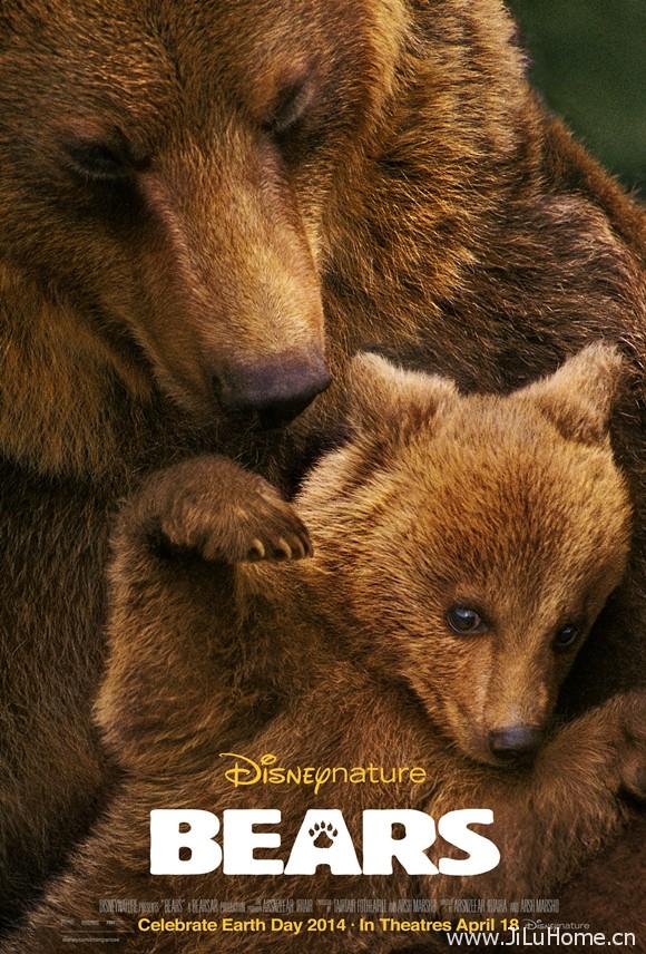 《 阿拉斯加棕熊/熊世界 Life Adventure Bears(2014)》