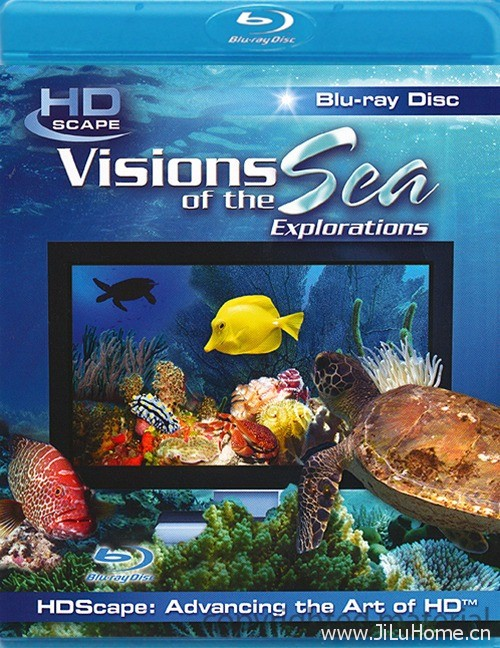 《大海的风景:探索 Visions of the Sea: Explorations (2005)》