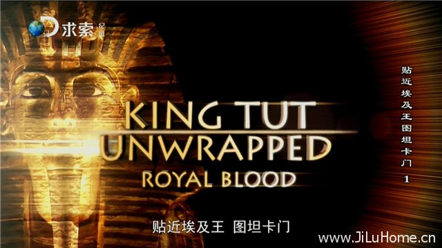 《贴近埃及王图坦卡蒙 King Tut Unwrapped (2010)》