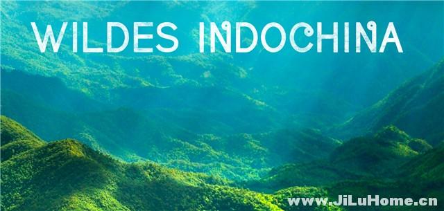 《中南半岛野生大地 Wildest Indochina (2014)》
