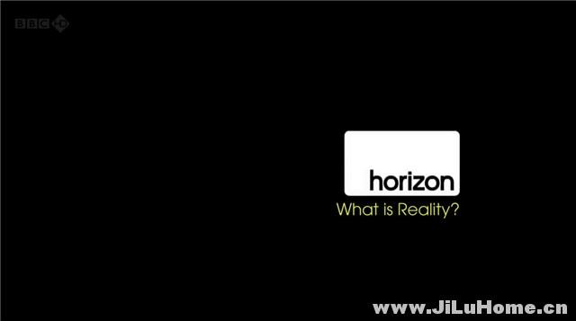 《现实是什么 What Is Reality? (2011)》