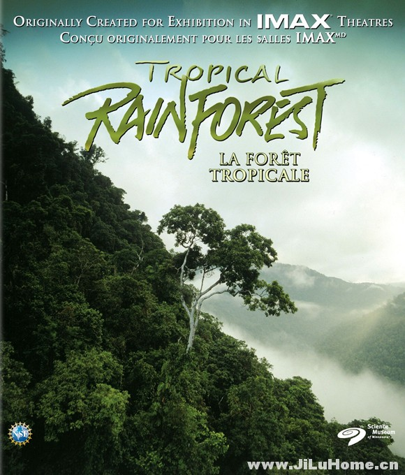 《热带雨林 Tropical Rainforest (1992)》