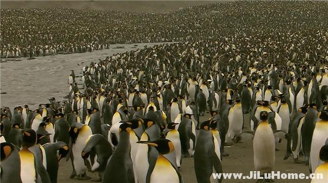 《南极洲之梦 Antarctica Dreaming (2007)》