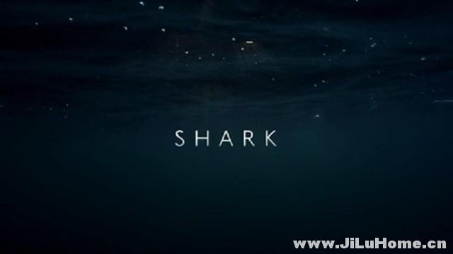 《鲨鱼/碧海狂鲨 Shark (2015)》