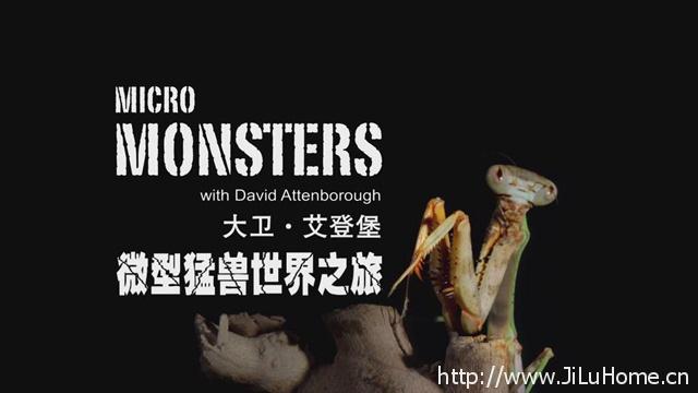 《大卫·艾登堡的微型猛兽世界之旅 Micro Monsters》