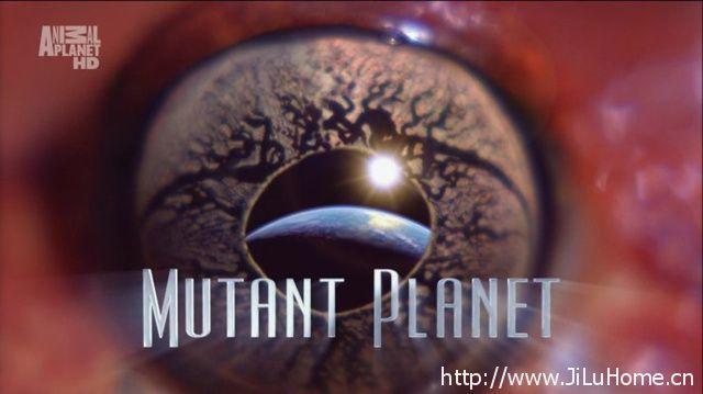 《变异星球 Mutant Planet》