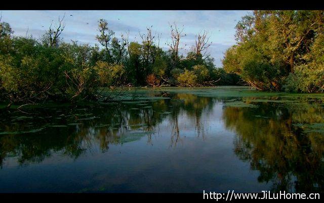 《多瑙河・欧洲的亚马逊 Danube Europes Amazon》