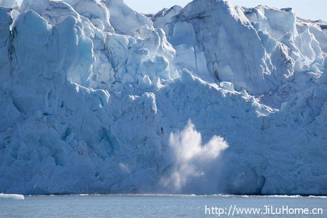 《到北极去/北极熊之心 To the Arctic》