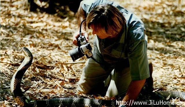 《弄蛇人奥斯汀 Discovery Austin Stevens Snakemaster》