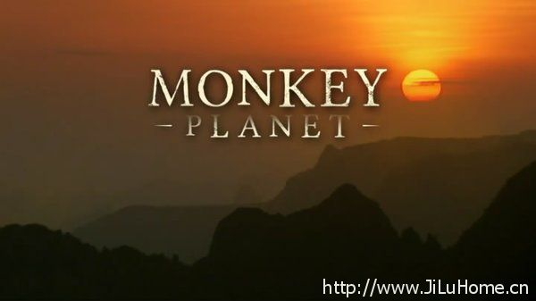 《灵长星球/猩猿星球 Monkey Planet》