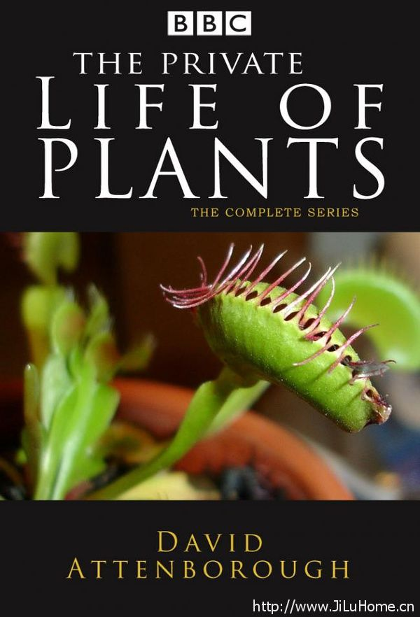 《植物私生活 The Private Life of Plants》