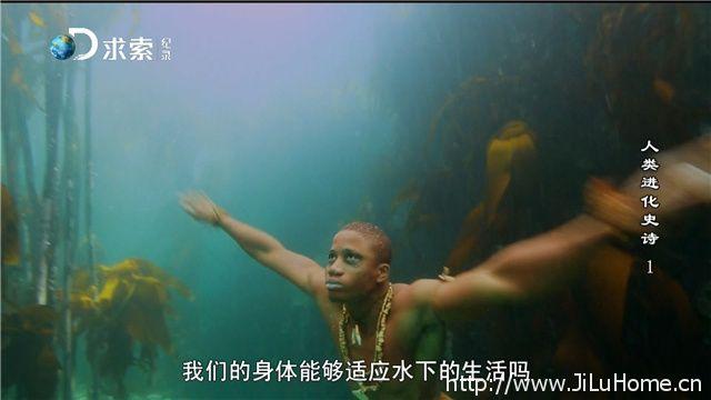 《人类进化史诗 The Great Human Odyssey》