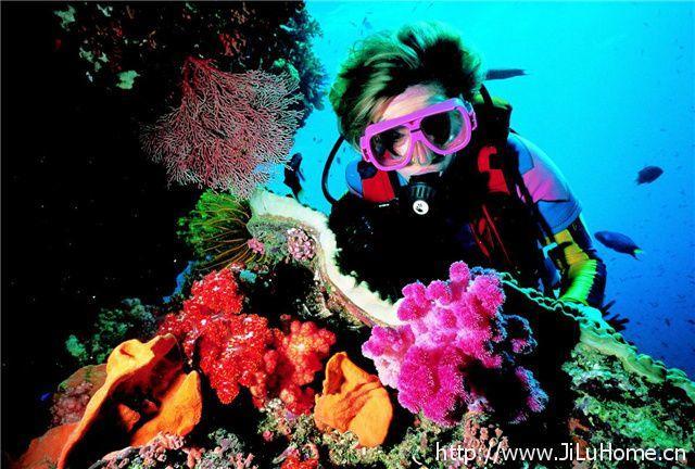 《大堡礁 Great Barrier Reef》