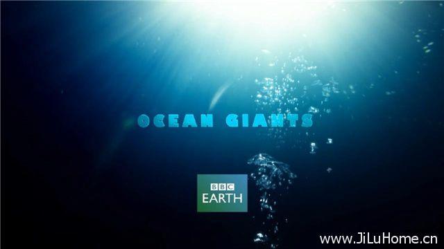 《海洋巨物 Ocean Giants》