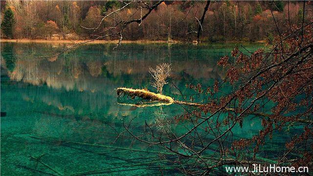 《自然遗产九寨沟 JiuZhaiGou Valley World Heritage》