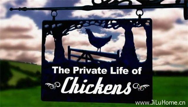 《家畜私生活 The Private Life》