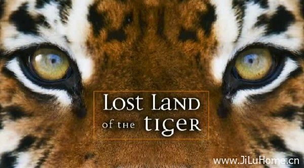 《老虎失落之地 Lost Land Of The Tiger》