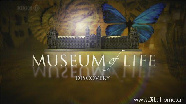 《生命博物馆 Museum Of Life》