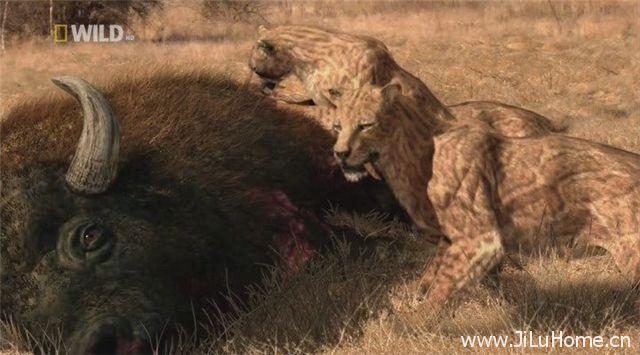 《史前掠食动物 Prehistoric Predators》