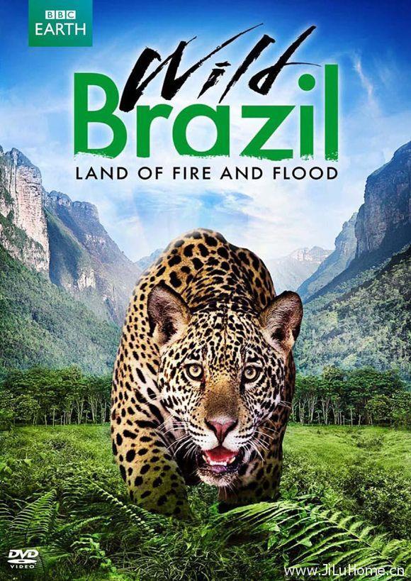 《野性巴西 Wild Brazil》