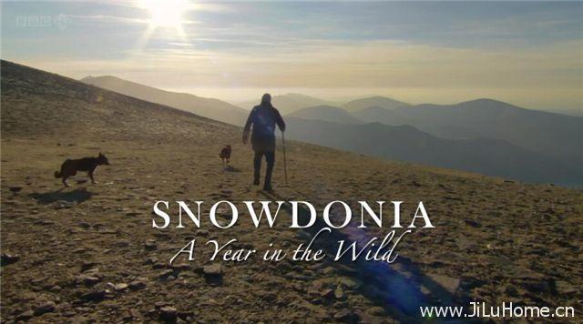 《野外奇境年鉴 A Year in the Wild》