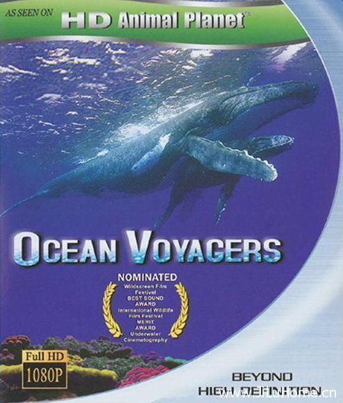 《鲸奇之旅 Ocean Voyager》