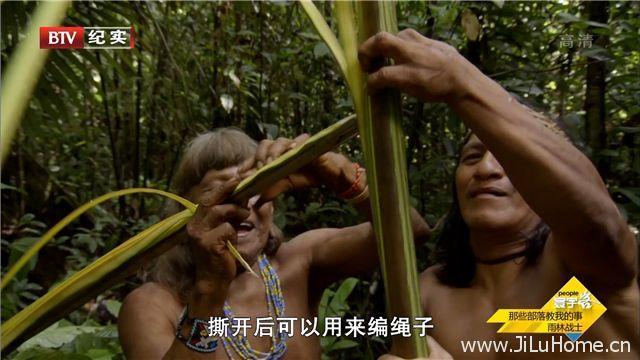 《那些部落教我的事 Survive the Tribe》