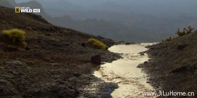 《中东沙漠之地 Desert Lands of The Middle East》