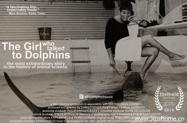 《与海豚交流的女孩 The Girl Who Talked to Dolphins》
