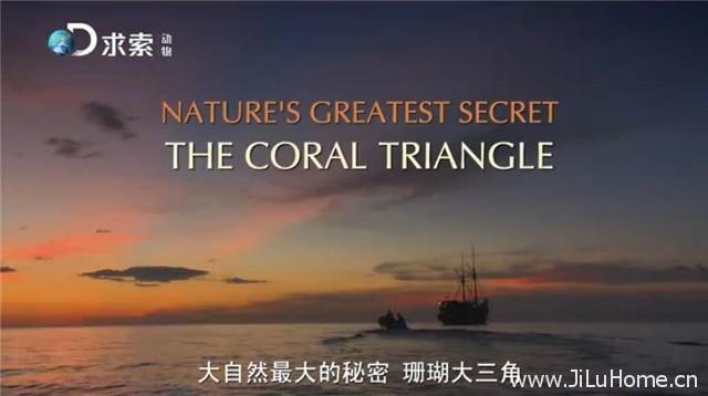 《珊瑚大三角 The Coral Triangle》