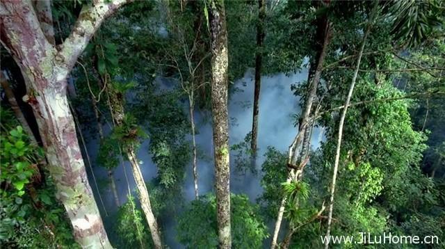《亚马逊 Amazon》