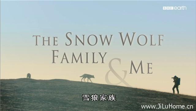 《雪狼家族与我 The Snow Wolf Family & Me》