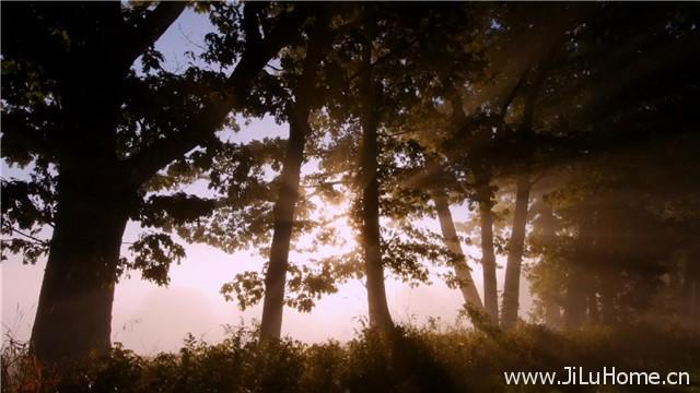 《四季仙境 Seasonal Wonderlands》