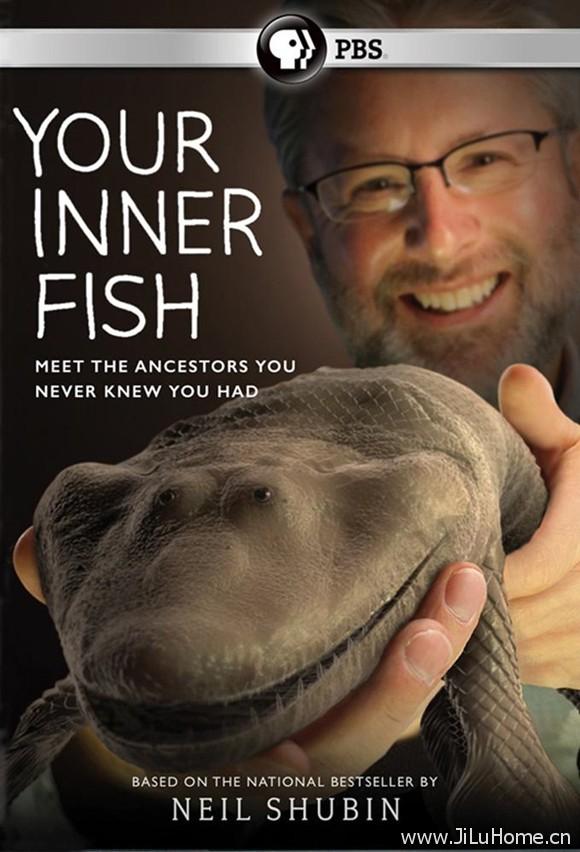 《你体内的鱼 Your Inner Fish》